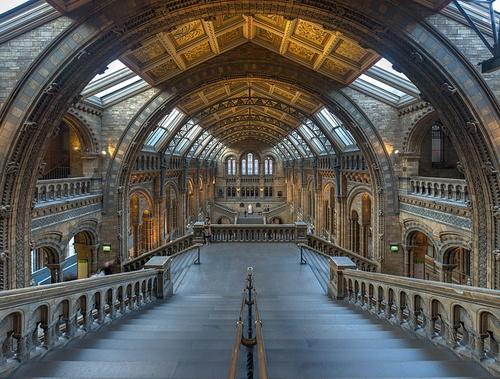 Natural History Museum päähalli Lontoo