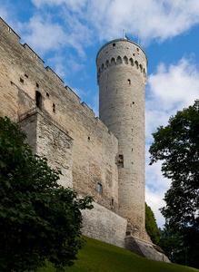Pikk Hermann torni Tallinna
