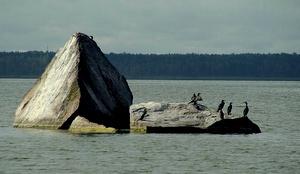 Lindakivi Ülemistejärvi Tallinna