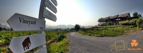 Hua Hin Hills viinitila Thaimaa