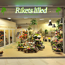Rikest Lilled Ülemiste Keskus Tallinna