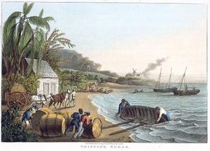 Shipping Sugar Antigua maalaus