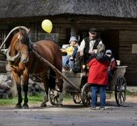 Hevosajelu Viron ulkoilmamuseo Tallinna