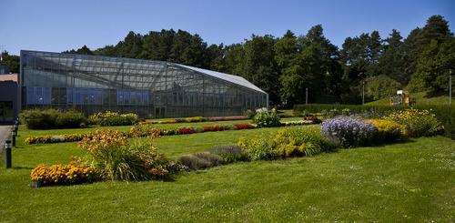 Kasvitieteellinen puutarha Tallinnassa