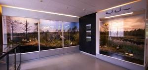 Kolmas kerros Viron luonnontieteellinen museo Tallinna