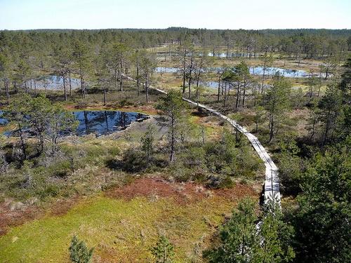 Lahemaan kansallispuisto Viro