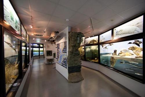 Viron luonnontieteellinen museo Tallinna