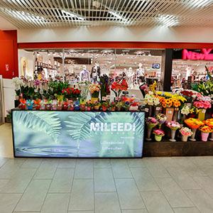 Mileedi Lilleärid Tallinna
