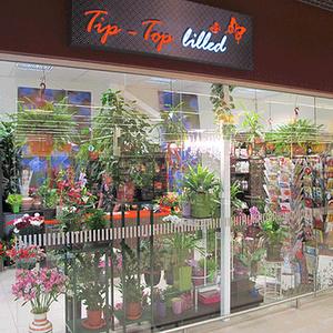 Tip-Top Lilled kukkakauppa Tallinna