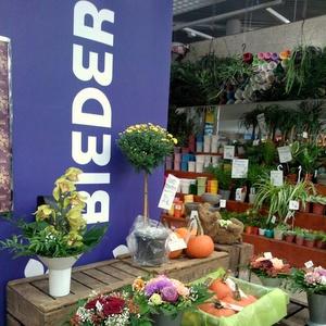 Bieder kukkakauppa Itäkeskus Helsinki