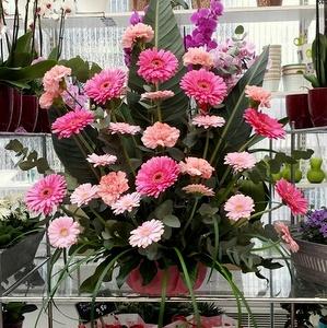 Bieder kukkatuotteet naistenpäivä Helsinki