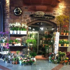 BlomsterCompagniet kukkakauppa Sturegallerian Tukholma