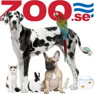 Zoo.se lemmikkieläinkauppa Tukholmassa